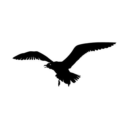 Flying Seagull Bird black silhouette isolated on white background.  illustration