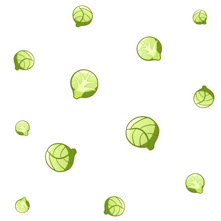 Pattern of twelve brussels sprouts of different sizes on white background in vector.