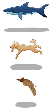 Set of levitating shark, dog and flying squirrel. There are shadows below them on the ground. White background, vector.