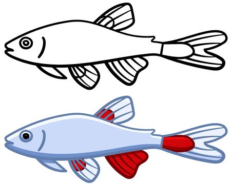 Bloodfin tetra fish in colored and line versions. White background, vector.