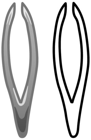Metal gray tweezers. Colored and line version. White background, vector.