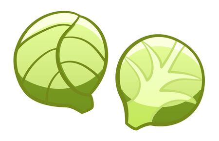 Green cartoon style brussels sprouts isolated illustration. White background, vector.