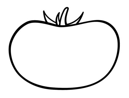 Tomato in black lines isolated illustration. White background, vector.  イラスト・ベクター素材