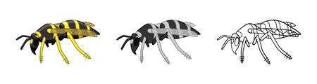 Side view wasps set isolated illustration. Cartoon, simple and outline style. White background, vector.