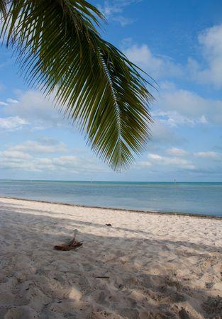 Key West, Florida. photo