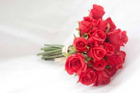 A bouquet of red roses, on a white background. photo