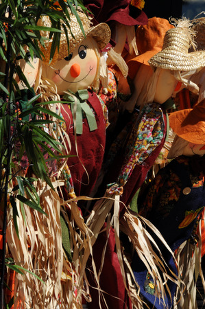 corn stalks: Autumn Harvest Scarecrows