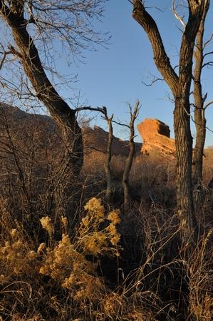 red rocks: Autumn Red Rocks Park Landscape