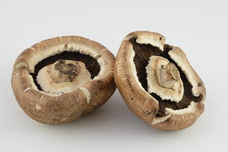 Two Portabello Mushrooms