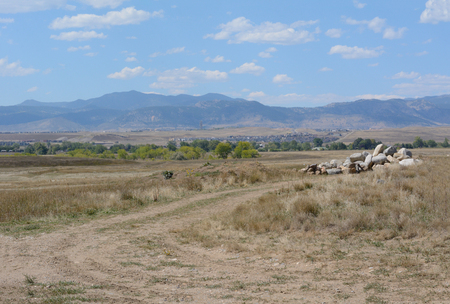 Dirt path though dry Front Range Colorado landscape in Westminster Colorado looking west towards Rocky Mountain foothills