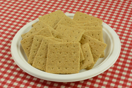 Graham cracker squares snack on white eco-friendly disposable plate in red checkered tablecloth Reklamní fotografie