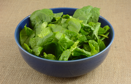 Rinsed and cleaned raw spinach in blue bowl on burlap Stock fotó