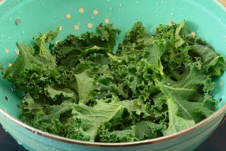 Closeup of freshly rinsed raw kale leaves in blue colander