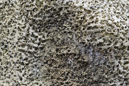 Porous stone surface texture closeup