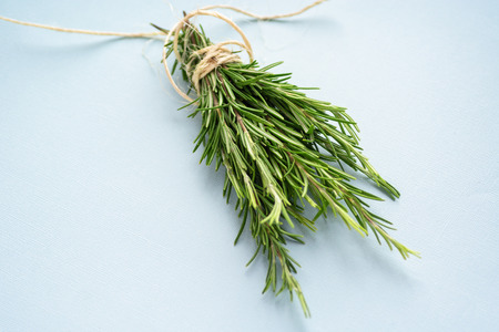 Organic natural fresh rosemary tied with a thread on a light blue background. Stock Photo