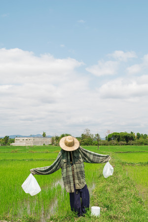 agricultural essence: Lonely scarecrow in open field with strong sunlight and cloudy blue sky Stock Photo