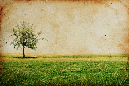 vintage background with tree Stock Photo