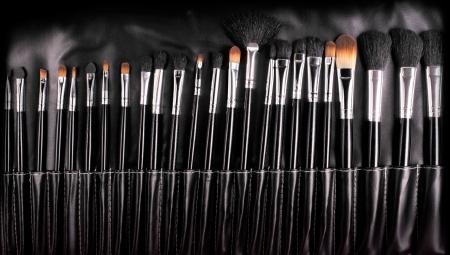 professional cosmetic brushes Stock Photo - 17162195