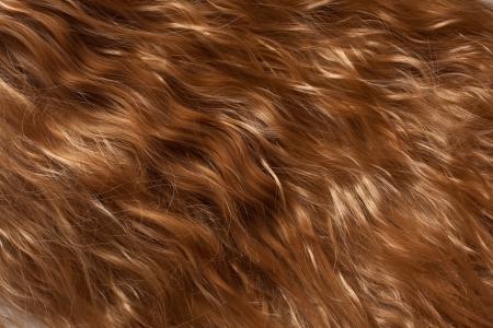 texture capelli: Struttura dei capelli