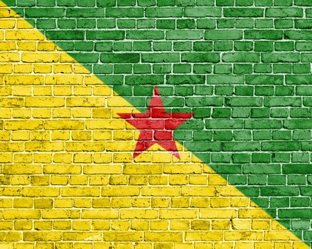patriotic background: Grunge French Guiana flag on brick wall