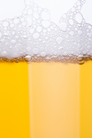 beer bubbles  photo