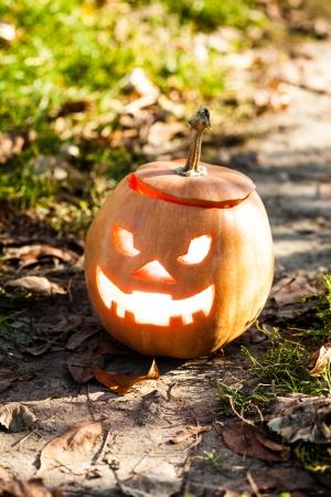 halloween jack-o-lantern standing on path photo