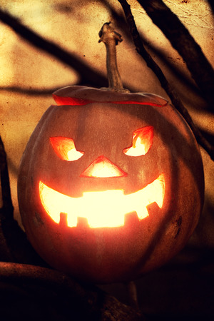 halloween jack-o-lantern on spooky tree photo