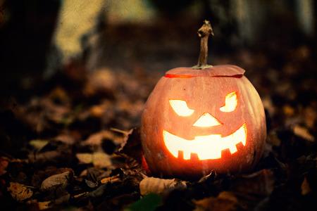 calabaza: Jack-o-linterna en hojas de oto�o Foto de archivo