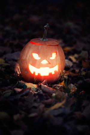 halloween jack-o-lantern on autumn leaves photo