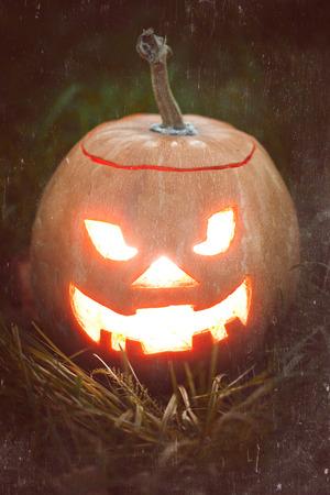 halloween jack-o-lantern on green grass photo