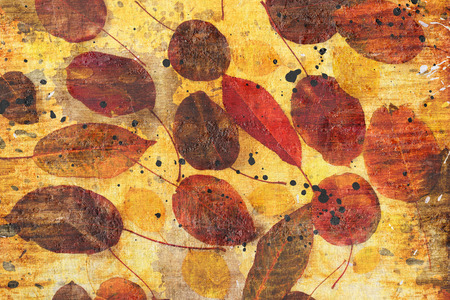 collection beautiful colorful autumn leaves on white background photo