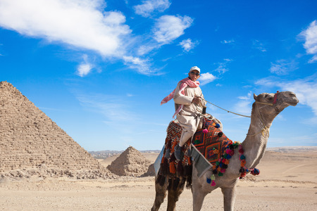 commands: GIZA, EGYPT - JAN 31, 2015: Bedouin commands a camel to sit down in Giza