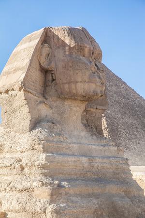 esfinge: Un hermoso perfil de la Gran Esfinge