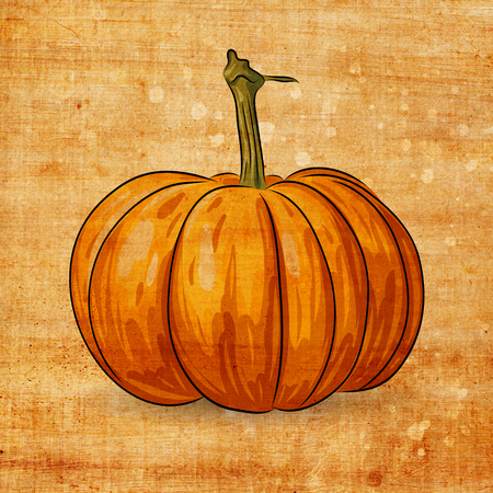 cucurbit: halloween pumpkin on grunge background with scratches