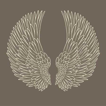 bandada pajaros: par de vectores de alas de ángel en el contorno. EPS Vectores
