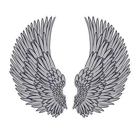 animal angelic: vector pair of angel wings isolated on white. EPS