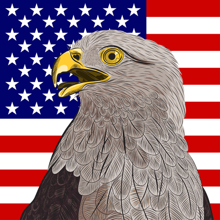 americas: bald eagle against the United States of Americas flag