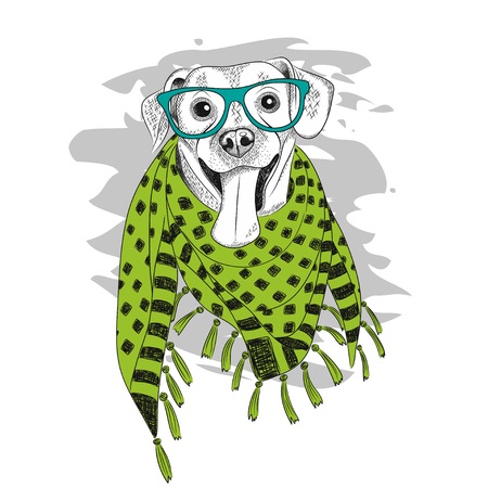 vector illustration of a hipster dog wearing glasses and scarf. EPS