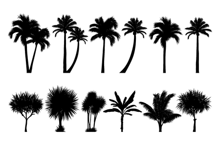 vector set of tropical palm and tree silhouettes. EPS Иллюстрация