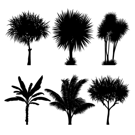 vector set of tropical palm and tree silhouettes. EPS Illustration