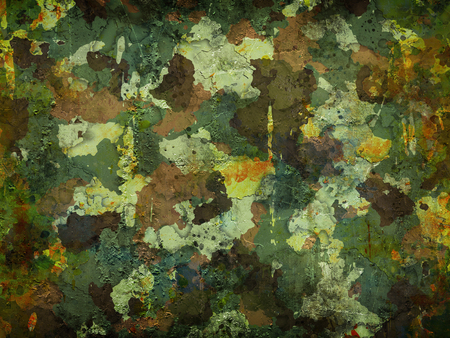 迷彩軍の背景