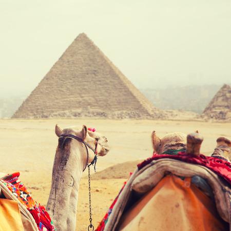 Egypt Cairo - Giza. General view of pyramids