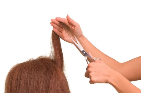 hairdresser is cutting young woman in the saloon  photo