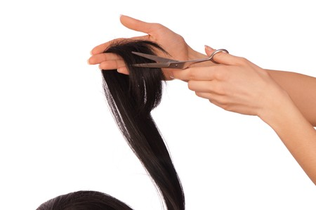 hairdresser cutting young woman with long black hair Stock Photo - 8135421