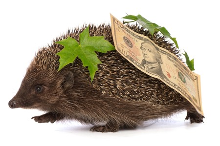 hastens: The hedgehog in motion hastens home from the bank carrying percent ten dollars profit