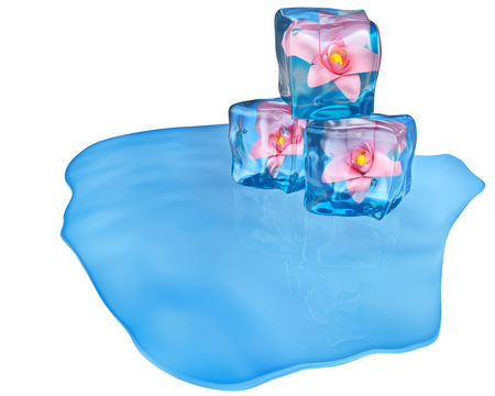 dilute: melting ice cubes of a blue shade with flowers and air bubbles Stock Photo