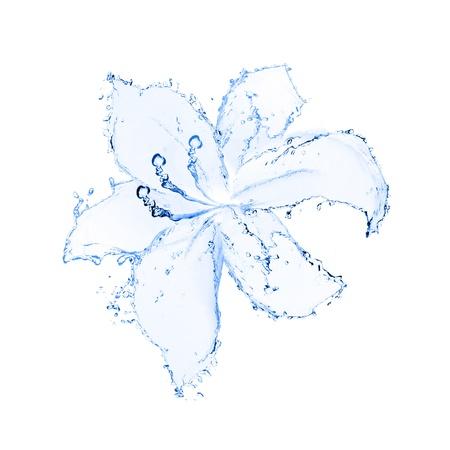 lirio acuatico: flor hecha de agua aisladas sobre fondo blanco