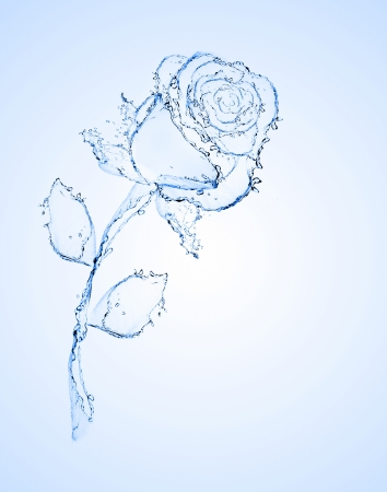 flower made of water  see more on my page Stock Photo - 13913250