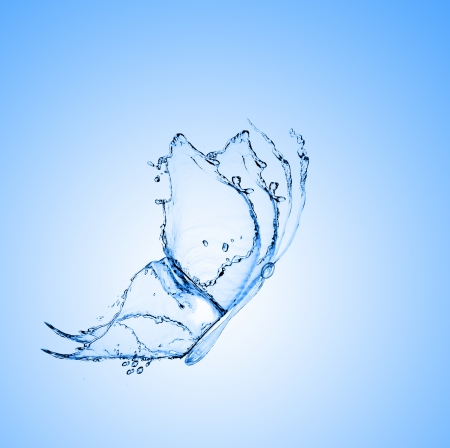 water butterfly on a blue gradient background