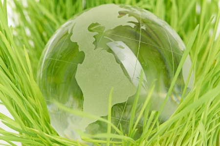 Environment concept, glass globe in the grass photo
